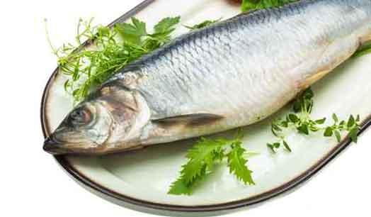 filetto-di-pesce